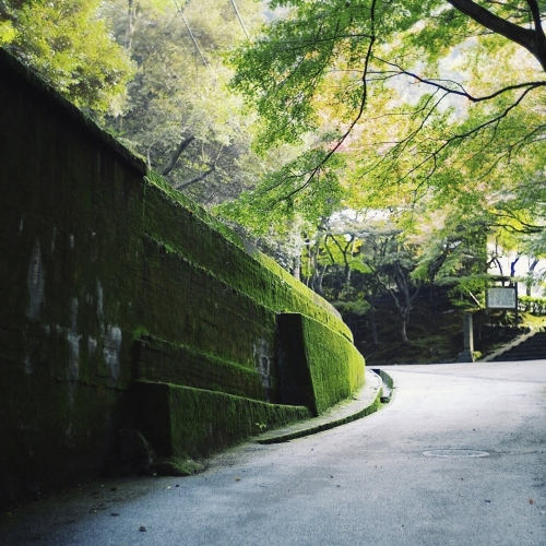 トリビア情報も発信。「そうだ 京都、行こう。」公式インスタグラムがスタートその4