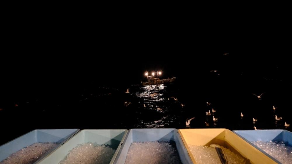 漁のクライマックス「網起こし」