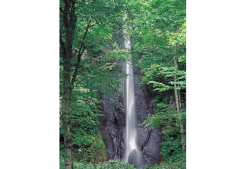 ③美しくも見ごたえのある・白糸の滝