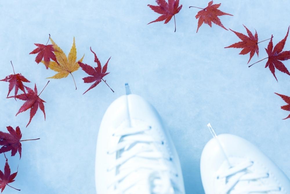 氷の上で感じる季節の移ろい