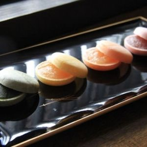 マカロンみたいな最中?熱海土産は「常盤木羊羹店」の和菓子に注目