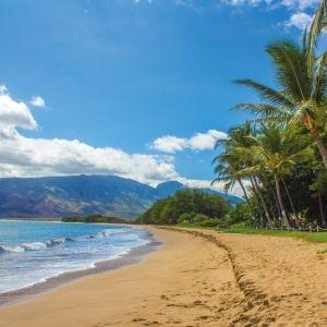 行くなら事前準備が大事。「ハワイ」に関する4つのおすすめ本