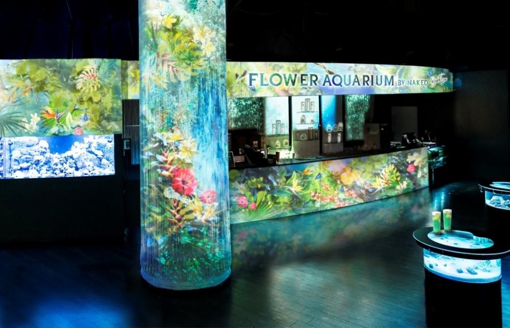水族館に初夏が来た!「アクアパーク品川」でネイキッドが手掛けるイベント開催中その4