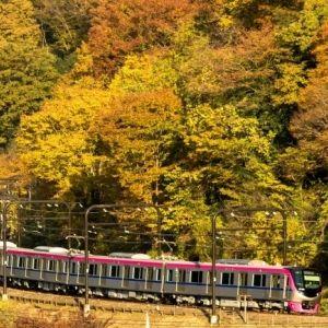 「Mt.TAKAO号」に乗って紅葉の高尾山へ! 秋のスタンプハイクにも注目