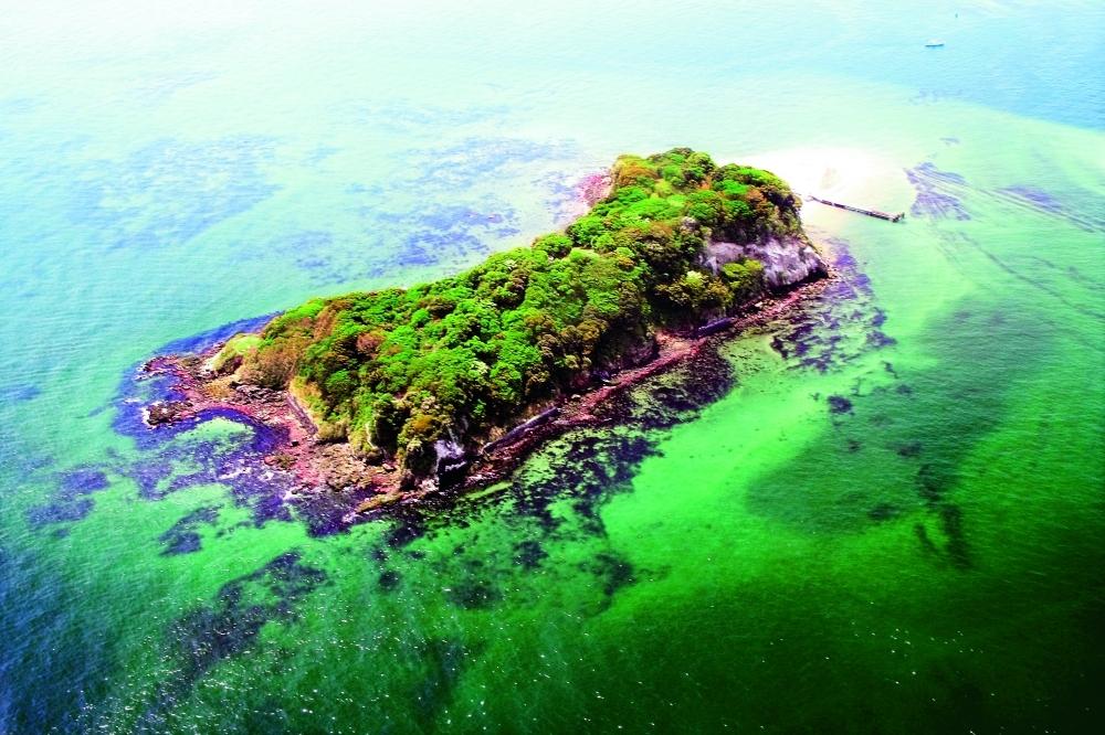 雄大な自然と個性的なアートを一緒に楽しむ「Sense Island -感覚の島- 暗闇の美術島」