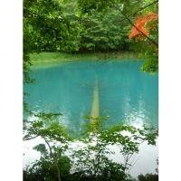 色が変わる不思議な湖。北海道の「オンネトー」の魅力とは?