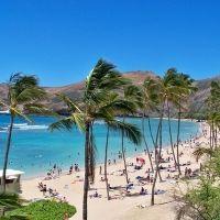 GWは直行便で便利になったハワイ島へ。今注目のスポットとは?