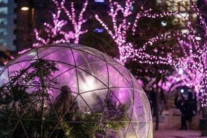 桜色に染まる目黒川で冬のお花見「目黒川みんなのイルミネーション2019」