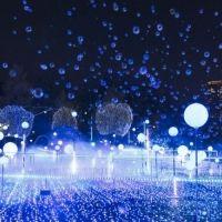 【今夜、デートに行かない?】公園の夜、11月から始まるドラマチックな東京ナイト
