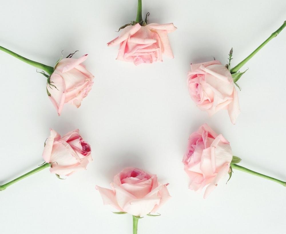 お花のプレゼントも