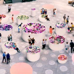 【東京】3月27日スタート! カラフルな花たちを満喫できるイベント「HIBIYA BLOSSOM 2020」開催