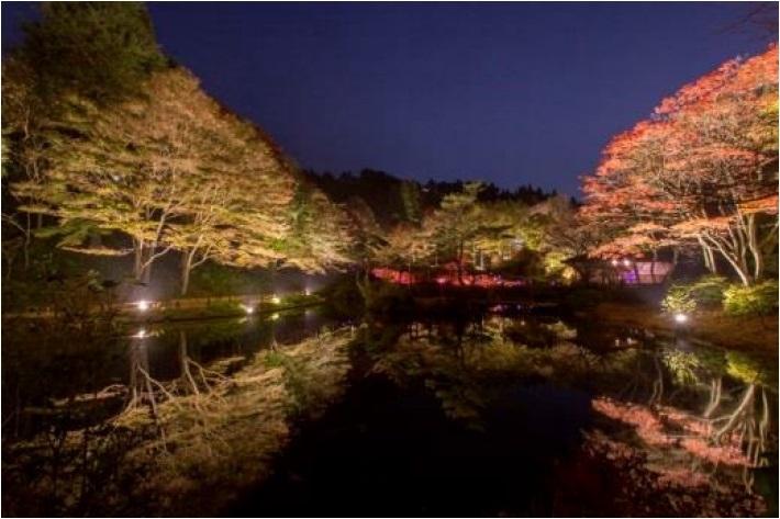 六甲山植物園