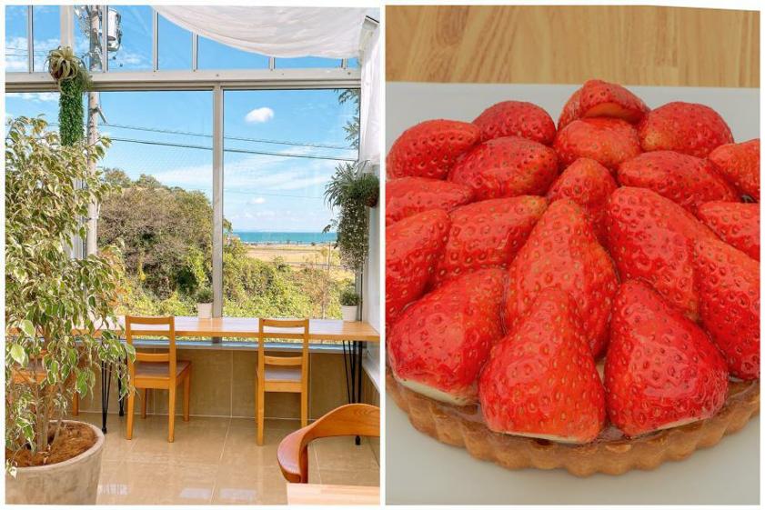⑤海が望める眺望抜群のカフェでイチゴを贅沢に使ったケーキを。「いちごの丘」