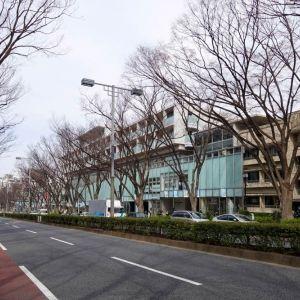 建築史家・倉方さんとひも解く東京。名建築が立ち並ぶ表参道へ