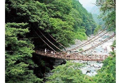 徳島で行くべき観光スポット:祖谷渓