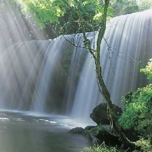 癒しパワーをもらう旅へ。熊本で自然を堪能するおすすめスポットその0
