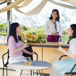 【静岡】【界 遠州】新茶とお菓子を茶畑を眺めながら楽しむ「新茶パーティ」開催その0