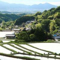 春休みはのんびり旅とリラックスステイ。心と身体が安らぐ奈良の厳選宿