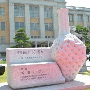 【勝手に栃木応援】魅力度最下位に物申す⁉ 実はスゴイ、栃木は日本一〇〇な県