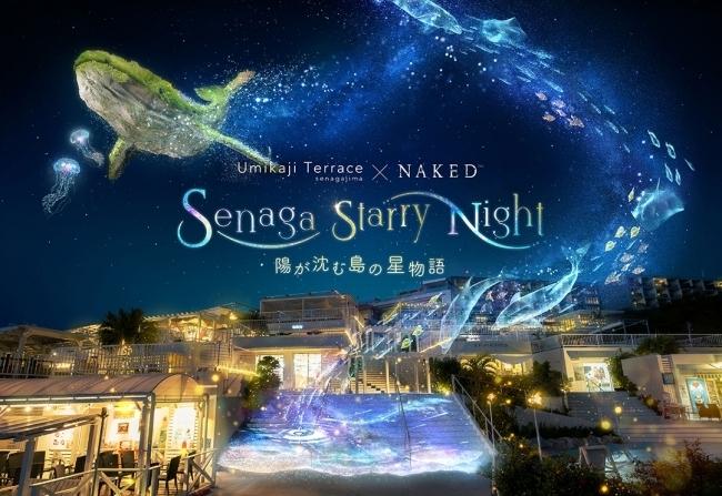 Senaga Starry Night-陽が沈む島の星物語-