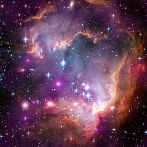 天球劇場の星空の秘密