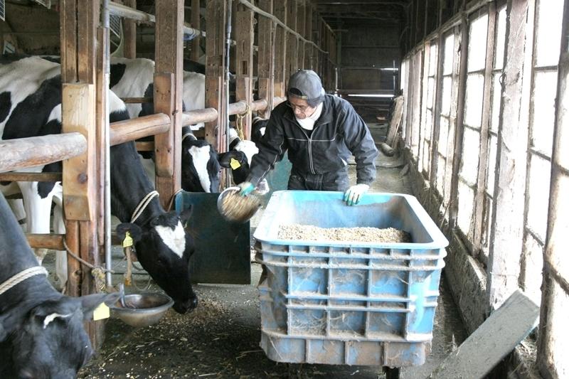 香久山の麓で酪農を営む「西井牧場」