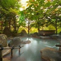 源泉をブレンドした緑褐色のにごり湯を堪能。宿「元湯 孫九郎」の魅力