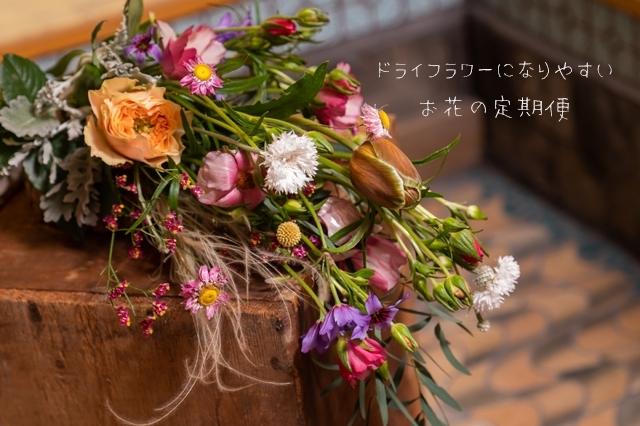 お花の定期便「greenpiece」
