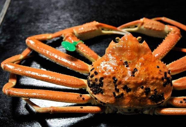 「旅色コンシェルジュ」が選んだ「松葉ガニ」が食べられる宿:昭恋館 よ志のや