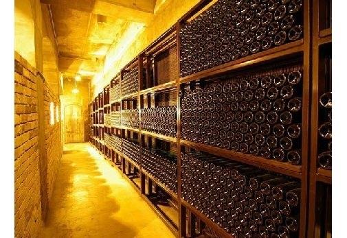 ①ワインのテーマパーク「シャトレーゼベルフォーレワイナリー」