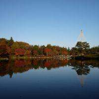 都内で秋を探しに行こう。東京都のおすすめスポット4選