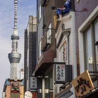 【旅色コンシェルジュが提案】感性を磨く女子一人旅!浅草・上野ののんびり1日旅プラン