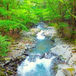 富士山を見ながらのカヤックは最高!静岡県の大自然を満喫できる「狩野川」