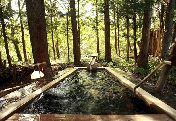 露天風呂付客室で贅沢な時間「温泉山荘 だいこんの花」