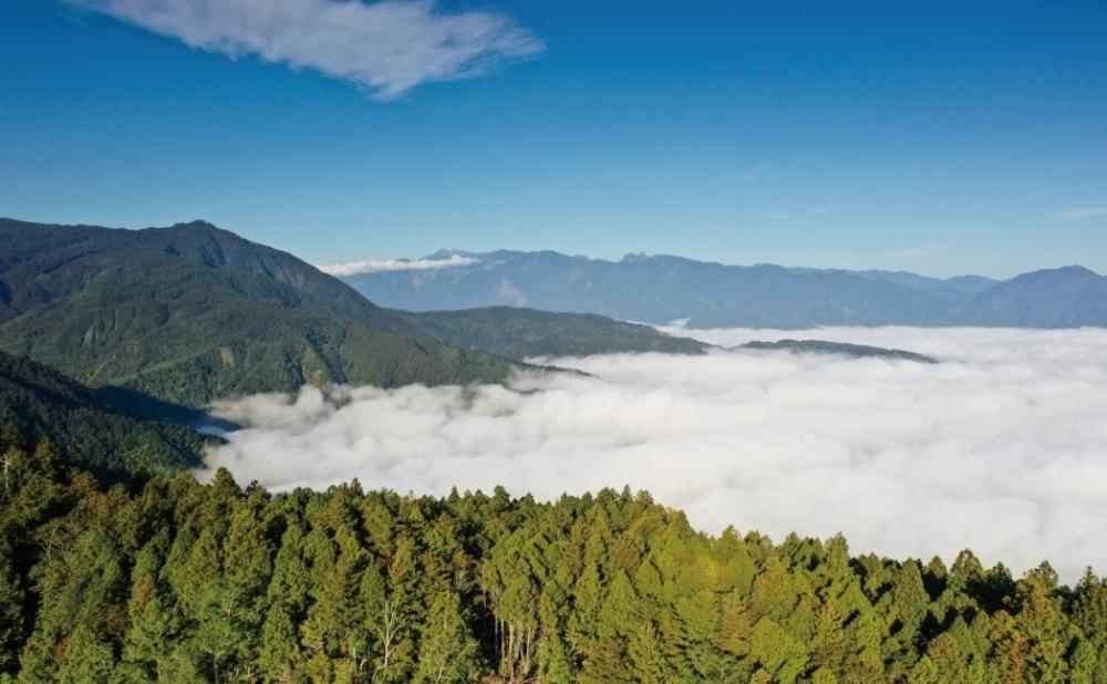 人気の宜蘭地方、神秘的な森林散策はいかが?