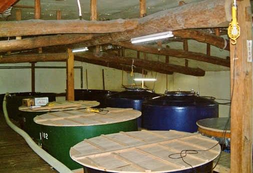 神聖な酒造りの技と歴史を知る「しろうおの里 中村酒造」(山口県)
