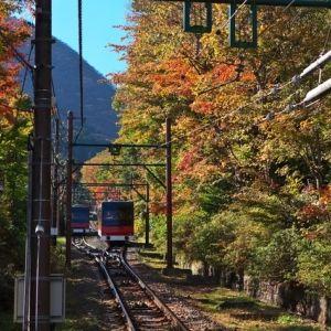 箱根「強羅温泉」で日常を忘れる癒しのひと時。おすすめ温泉旅館4選