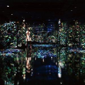 増田セバスチャン×クロード・モネ。「ポーラ美術館」で7月22日より企画展開催