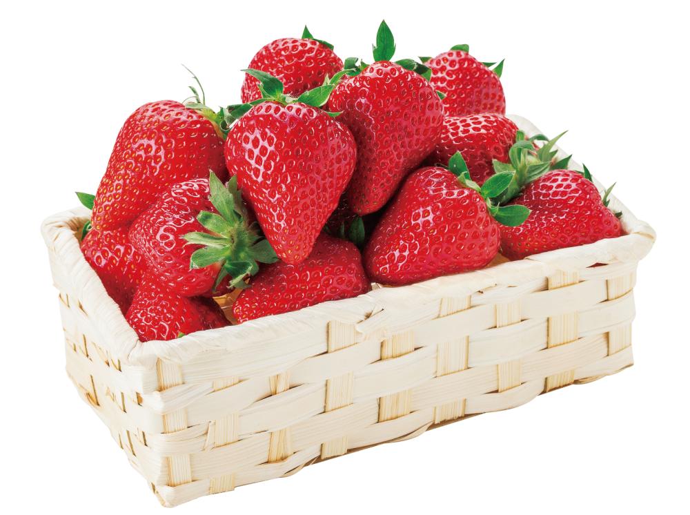 新品種イチゴ「ゆうべに」フェア開催