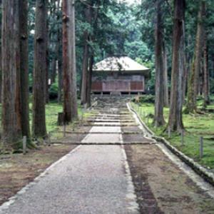 美しい苔寺としても有名。福井県で訪れたい「白山平泉寺旧境内」とは