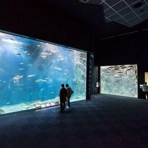 日本最大級の水族館に宇宙博物館も!? 旅先で寄るべき「道の駅」-北海道編-