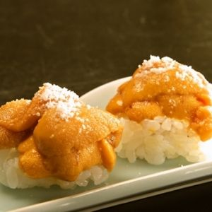 全国各地のお寿司屋さんを巡る旅。職人の技が光る逸品を食べに行こう