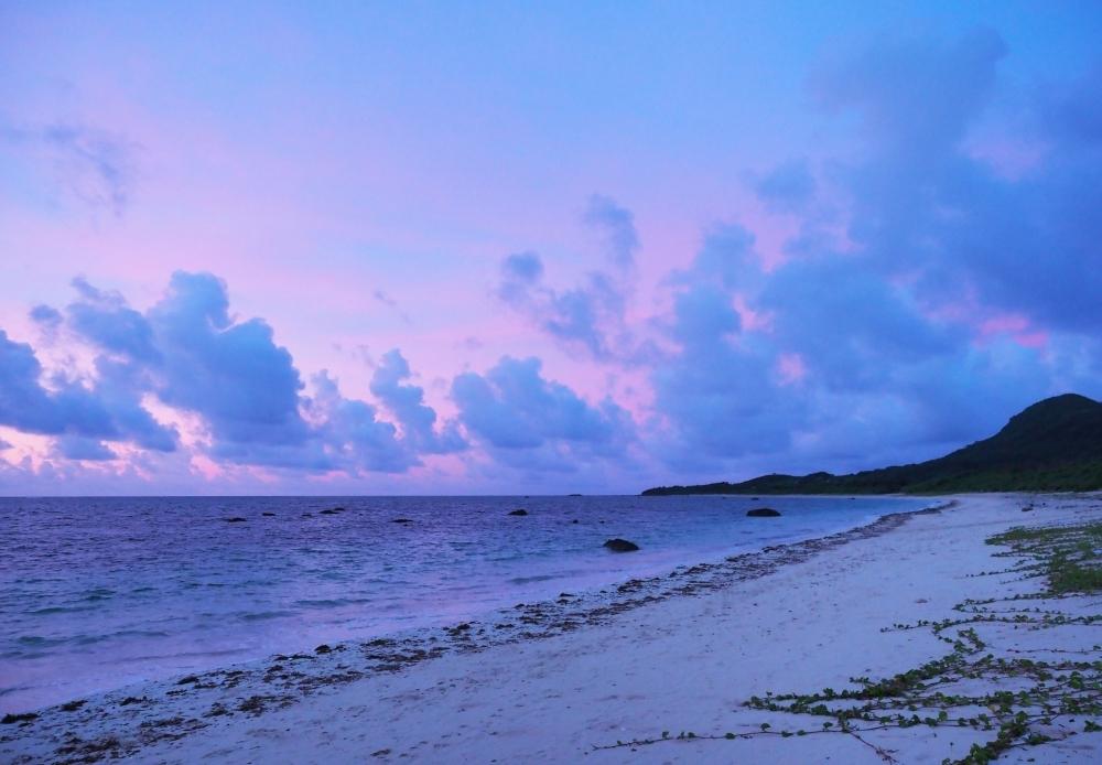 潮が引くと、ポコポコした岩の海に! 表情豊かな「伊原間海岸」