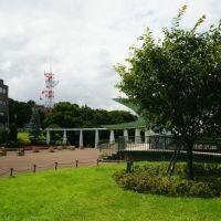 一人旅が面白くなる、お手軽一人散歩。横浜市・山手エリアに行こう!