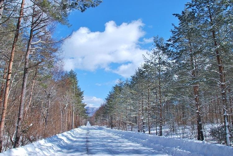 夏だけじゃない。冬を満喫する「軽井沢アイスクルーズ」