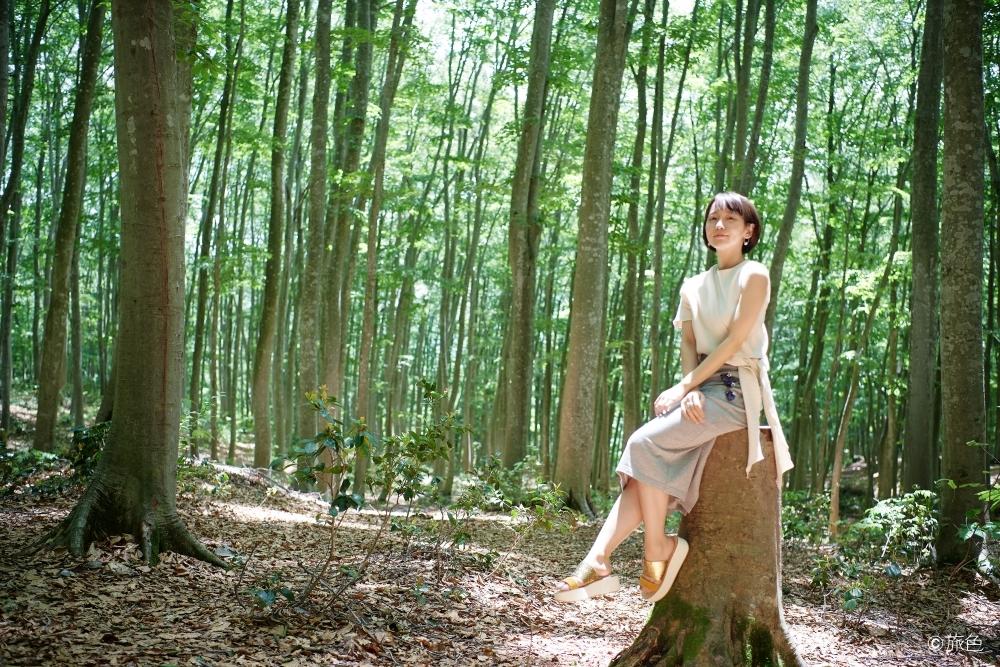 吉岡里帆さんが案内するアートなスポット。自然の癒しと芸術を楽しむ新潟旅へその2