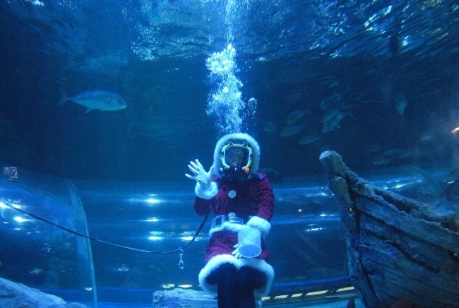 しな水のクリスマス2019