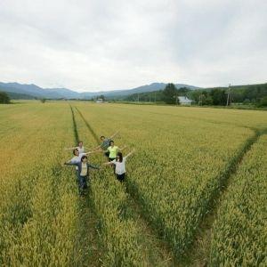 """【北海道】「えづらファーム」に聞く、野菜の収穫体験やピザ作りも楽しめる""""ファームステイ""""の魅力その0"""