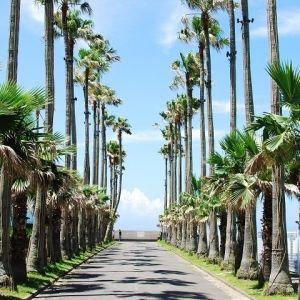 【旅色コンシェルジュが提案】<関東>次の旅の予定はいつ? 大型連休におすすめの日帰り旅