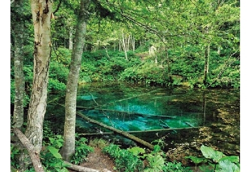 ②神の子池